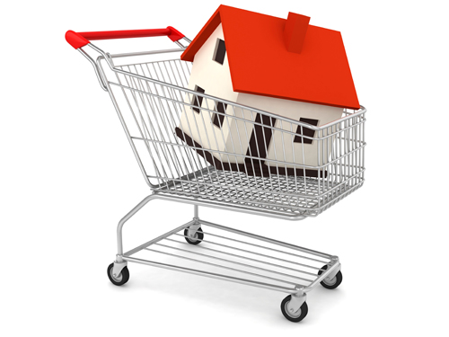 Procurement image of house in shopping trolley