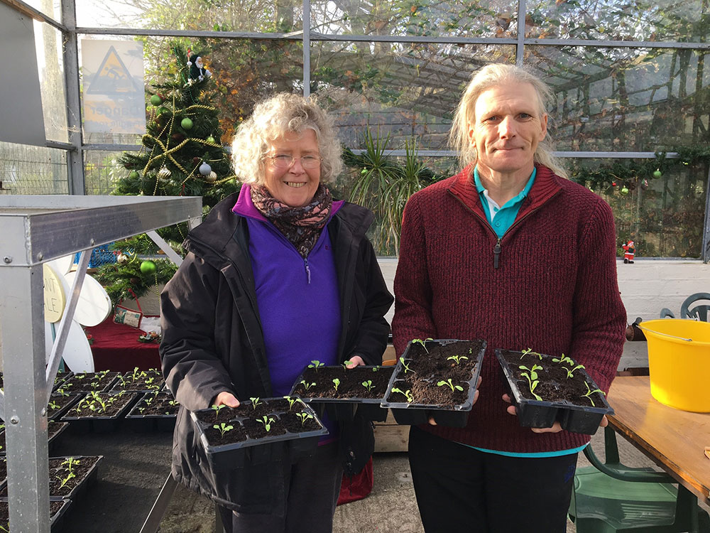 Social enterprise hires apprentice growers